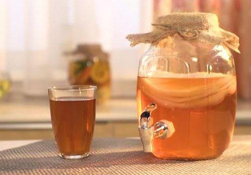 Чайный гриб – как ухаживать и употреблять?