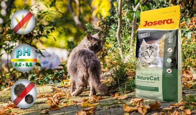 Корма для кошек премиум-класса – рейтинг: ТОП-10