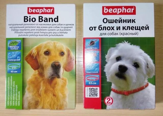 Таблетки для собак от клещей: ТОП-5 лучших