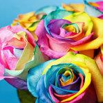 Что подарить жене на День рождения: ТОП-60 идей подарков