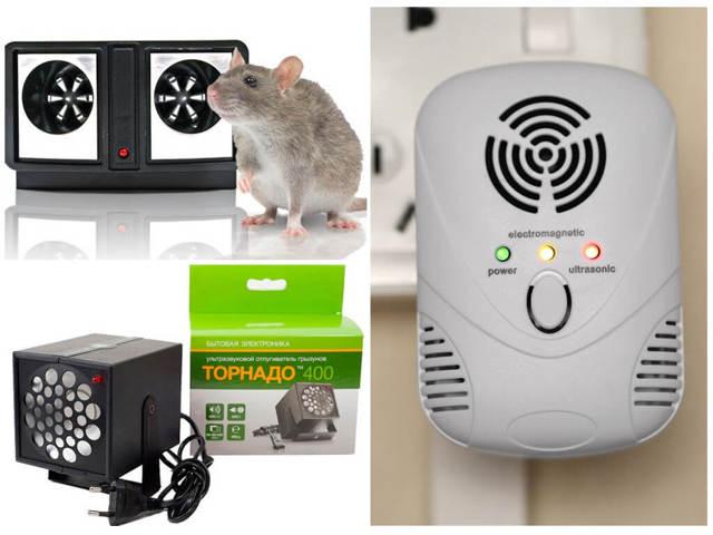 Как избавиться от мышей в частном доме навсегда народными средствами: 16 способов