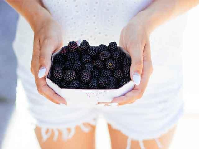 Ежевика – польза и вред для здоровья