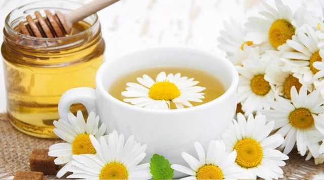 Ромашковый чай – польза и вред для женщин и мужчин
