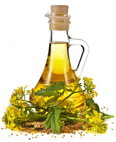 Горчичное масло - польза и вред. Как принимать?