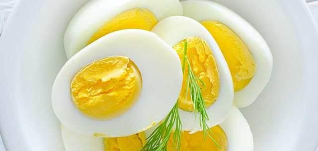 Яичная диета на 2 недели – меню на каждый день