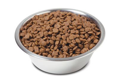 Сухой корм для кошек – какой лучше: ТОП-10