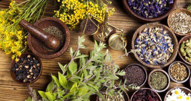 Как лечить псориаз в домашних условиях: народные средства + препараты
