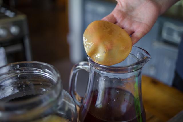 Чайный гриб – полезные свойства и противопоказания, отзывы врачей