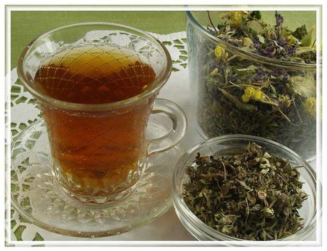 Иван-чай – польза и вред