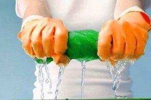 Как избавиться от двухвосток в частном доме: ТОП-10 средств