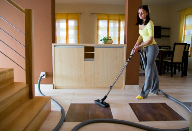 Постельные клопы – как избавиться в домашних условиях
