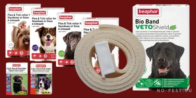 Ошейник для собак от блох и клещей: ТОП-10 лучших