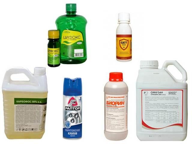 Как избавиться от блох в доме быстро в домашних условиях: 17 способов