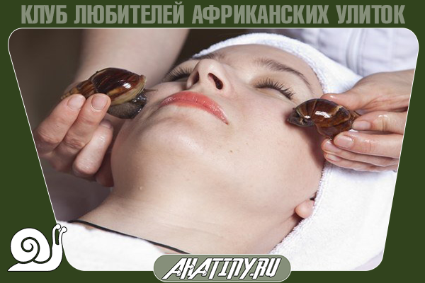 Ахатины в косметологии – польза и вред
