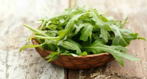 Руккола салат – польза и вред