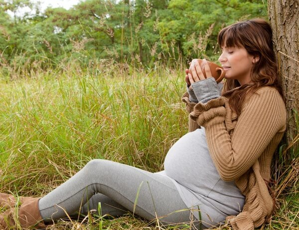 Цикорий – польза и вред для здоровья после 50 лет