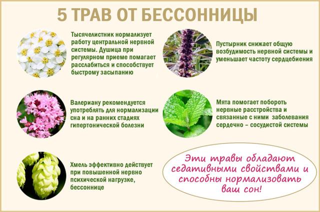 ТОП-8 эффективных средств от бессонницы без привыкания