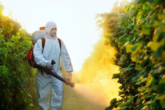 Средства от сорняков в огороде: ТОП-20 лучших гербицидов