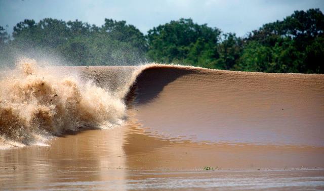 Река Амазонка: где находится, описание, интересные факты