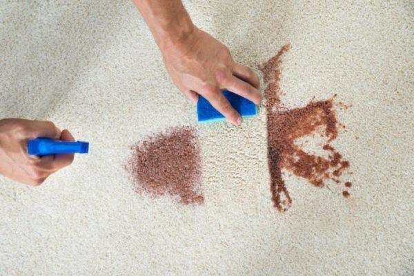 Как почистить диван в домашних условиях быстро и эффективно: ТОП-30 способов